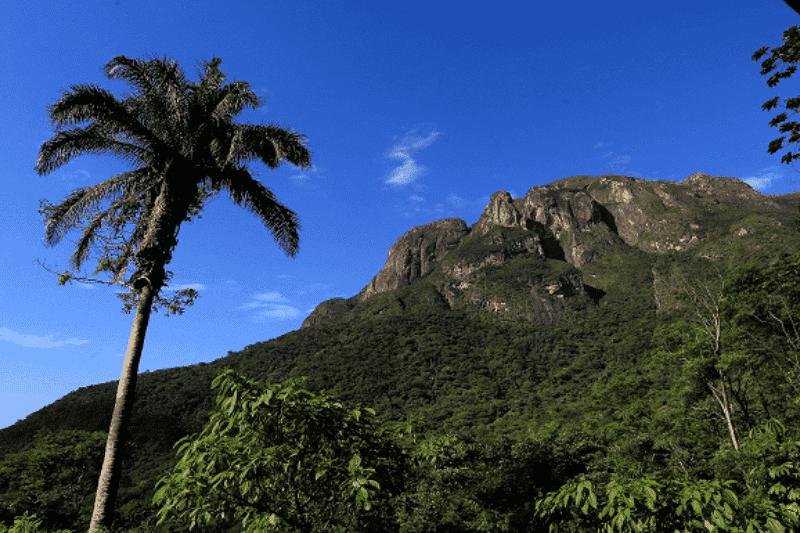 https://btgviagens.com.br/wp-content/uploads/2019/09/Trem-e-Trilha-Parque-Estadual-Marumbi-1.png