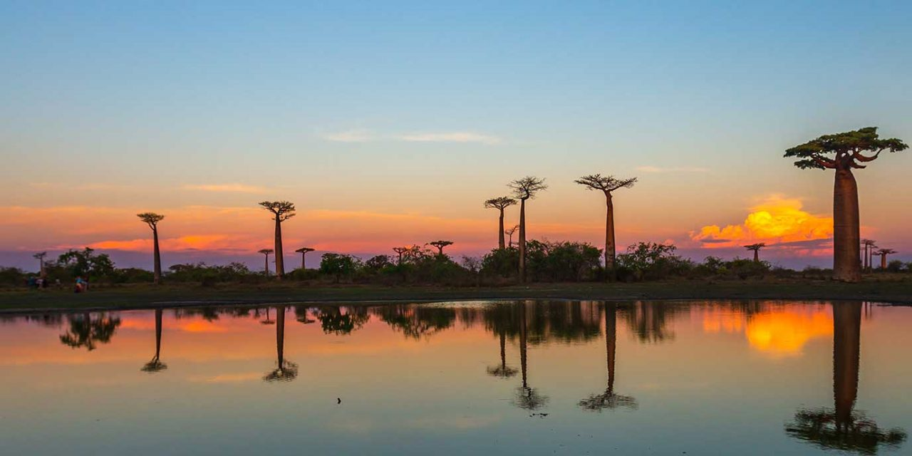 https://btgviagens.com.br/wp-content/uploads/2019/09/pacotes-de-viagens-banner-destino-africa-madagascar-1280x640.jpg