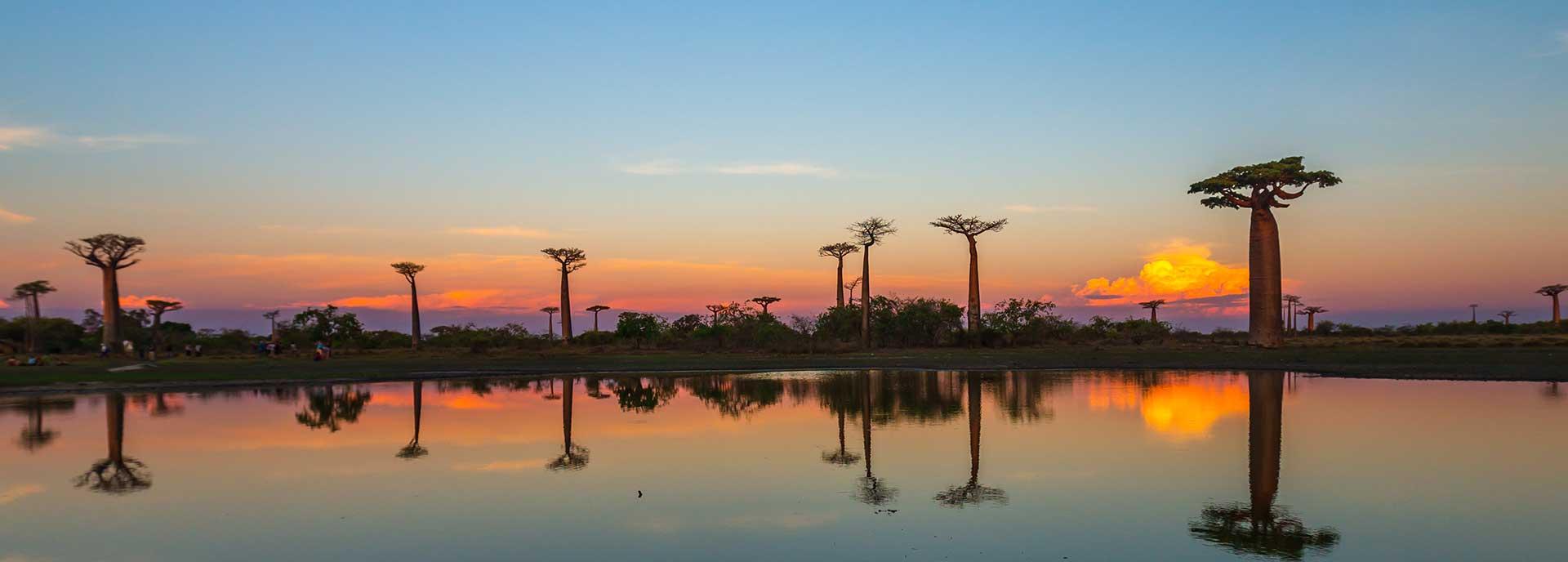 Pacotes de viagens Madagascar