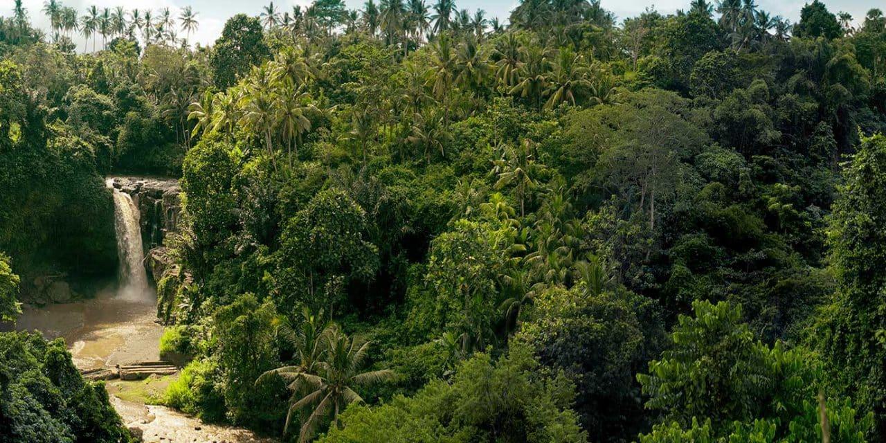 https://btgviagens.com.br/wp-content/uploads/2019/09/pacotes-de-viagens-banner-destino-brasil-amazonas-floresta-1280x640.jpg