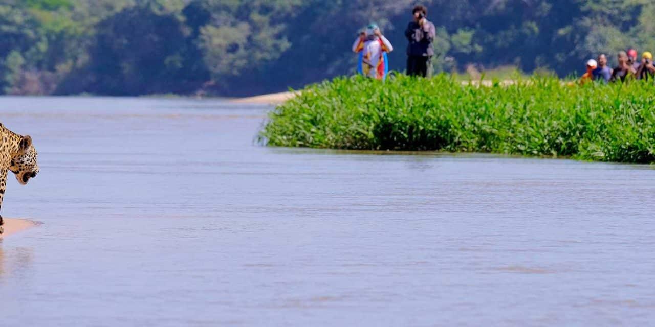 https://btgviagens.com.br/wp-content/uploads/2019/09/pacotes-de-viagens-banner-destino-brasil-centro-oeste-mato-grosso-pantanal-2-1280x640.jpg