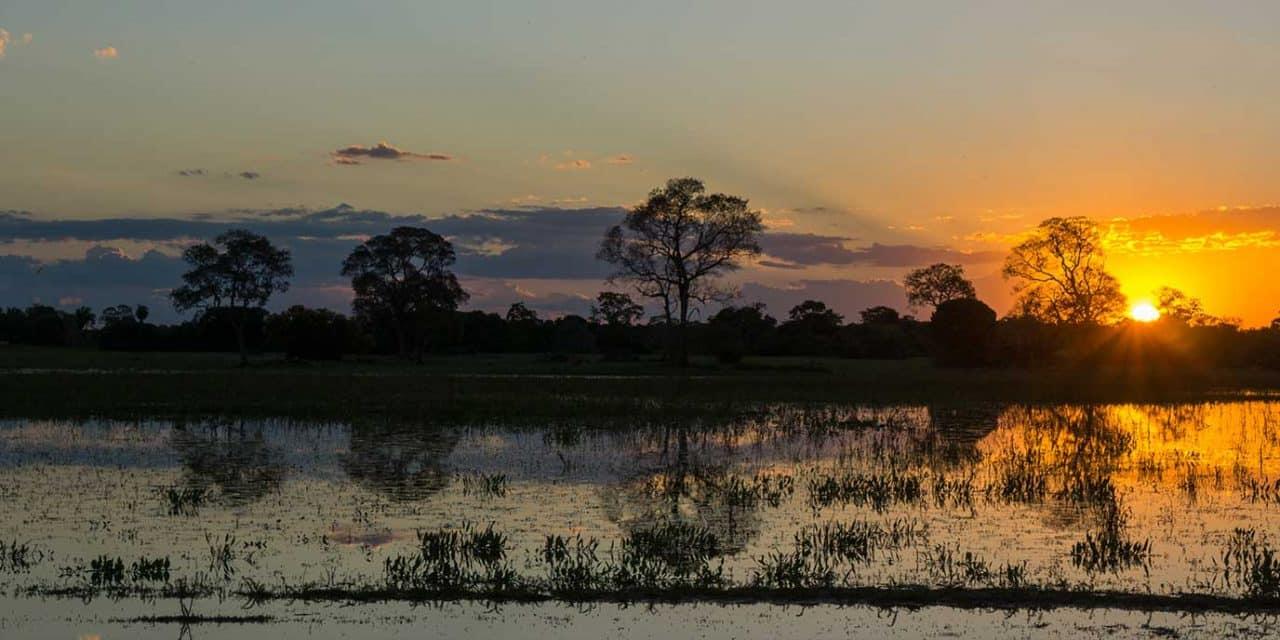 https://btgviagens.com.br/wp-content/uploads/2019/09/pacotes-de-viagens-banner-destino-brasil-centro-oeste-mato-grosso-pantanal-capa-1280x640.jpg